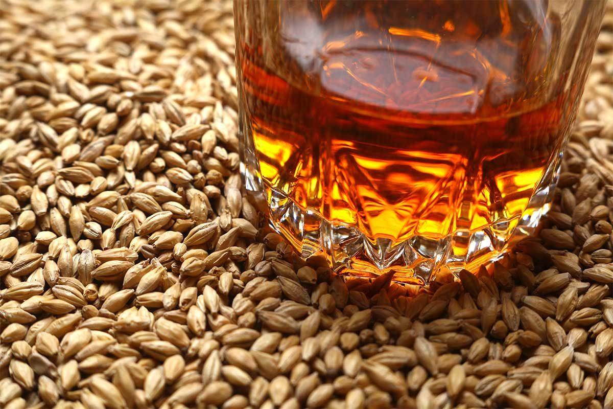 Whiskey 101: A Quick Guide to Grains - Lux Row Distillers